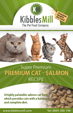 Premium Cat with Salmon